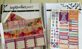 Planner Sticker Haul
