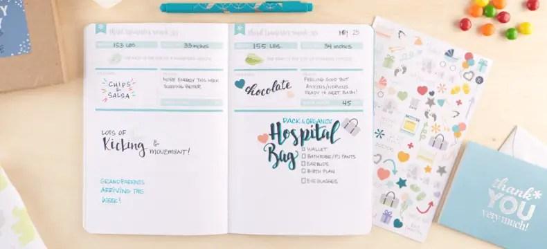 Erin Condren Petite Planner Pregnancy Journal