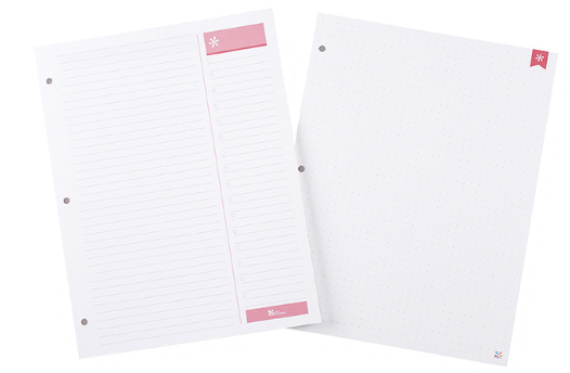 Erin Condren 3 Hole Punched Insert Pad
