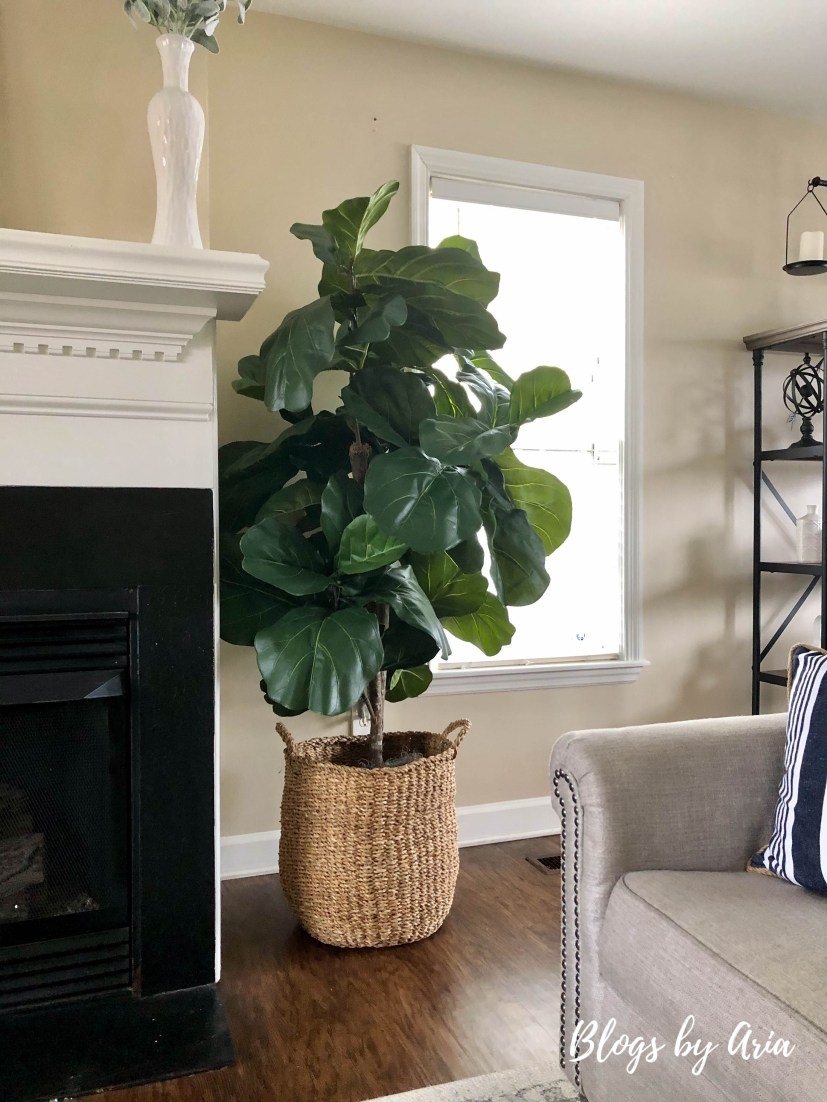 Wayfair fiddle leaf fig with basket full review