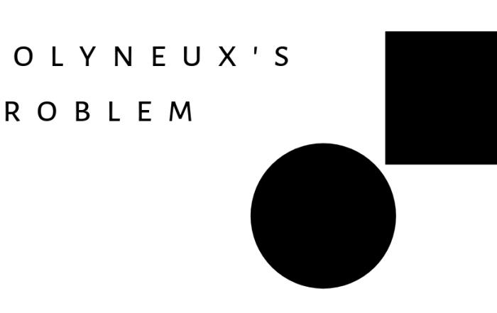 Molyneux's Problem