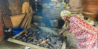 What is the bushmeat crisis and why should we care?