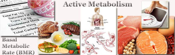 Weight-Loss-Can-Slow-Down-Your-Metabolism
