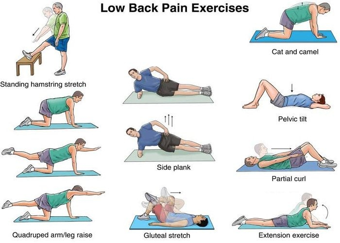 6 Stretches to Help Back Pain eBook