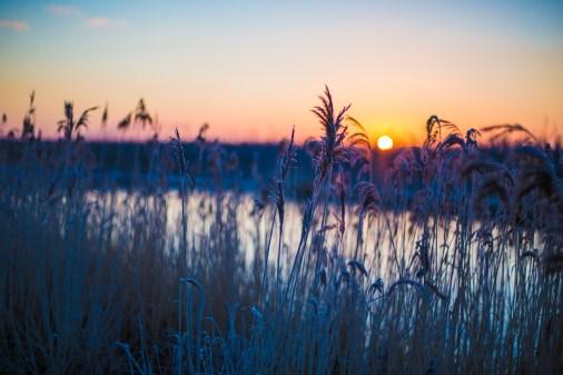 frozen-076