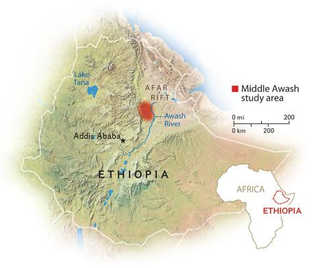 L'area del ritrovamento (National Geographic)