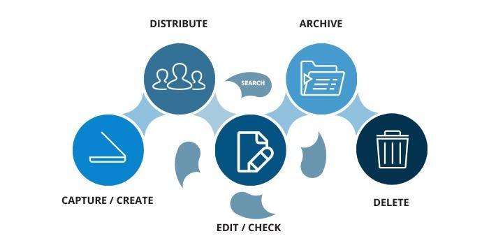 Document Management System Work
