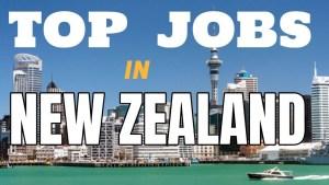 Job in New Zealand