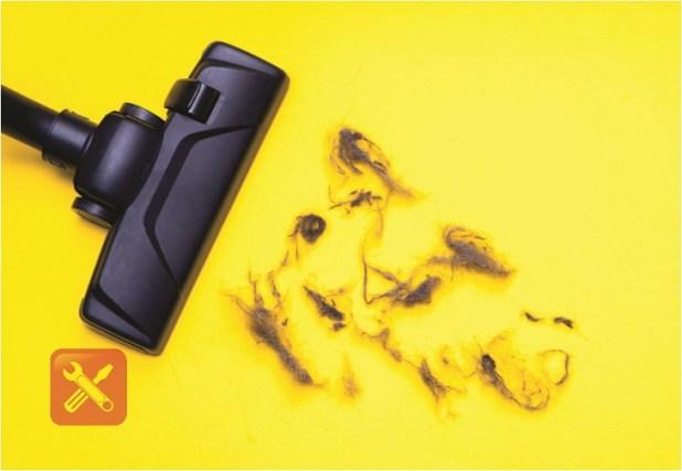 type vacuum cleaner