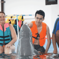 The wild wild west and dolphins of Pattaya!