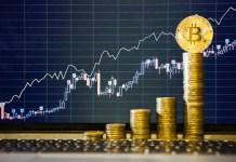 Đáy đây rồi - Kịch bản nào hiện tại cho Bitcoin?