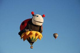 montgolfiere_coccinelle