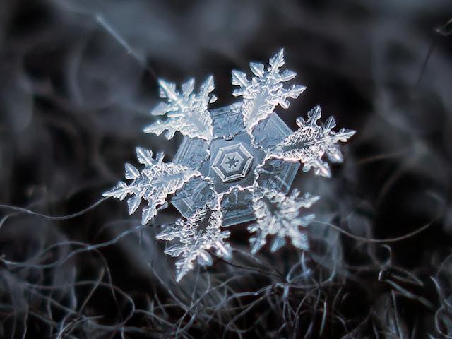 flocons-de-neige-a-moscou-9