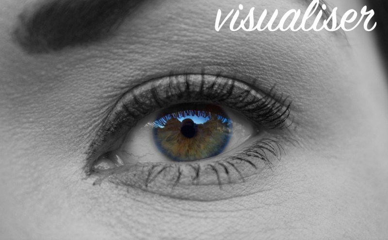 visualiser