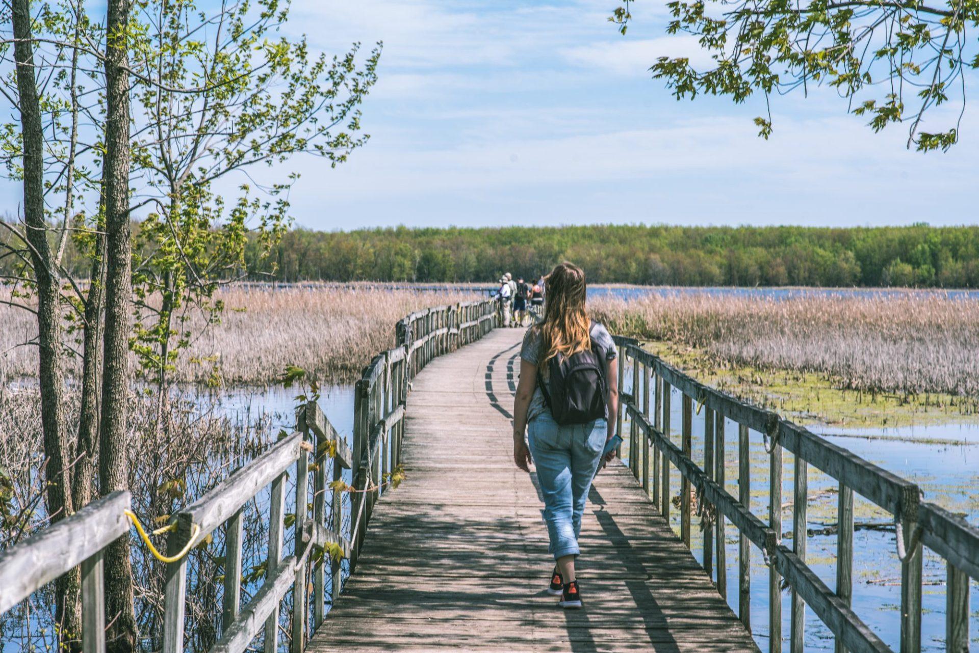 Parc national d'Oka - Dominique Caron