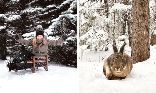 activites au Quebec hiver