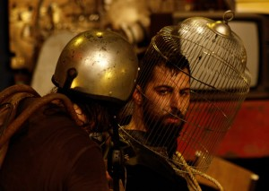 Dom Quixote 8 © Paulo Abrantes