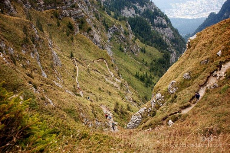 valea jepilor vazuta din traseul la crucea caraimanului