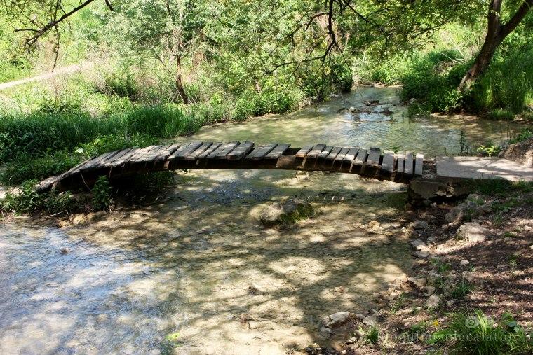 pod langa cascada kaya bunar (hotnitsa)