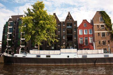 case colorate amsterdam