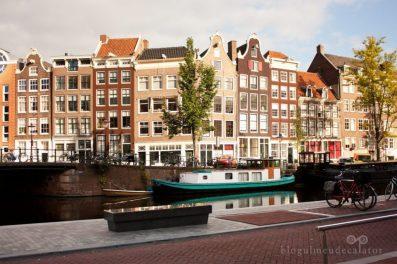case in Amsterdam