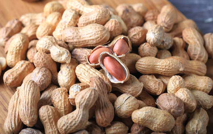 Makanan Untuk Kesehatan Jantung - Kacang Tanah