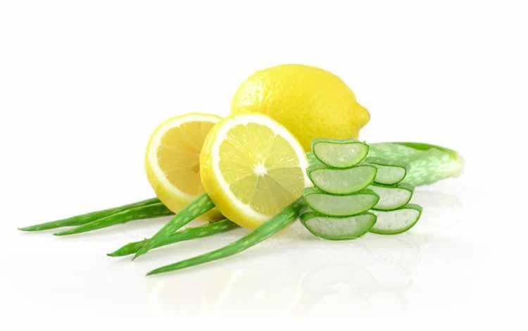 Cara Yang Tepat Mengobati Jerawat Dengan Menggunakan Lidah Buaya - Mengobati Jerawat Dengan Lidah Buaya Yang Dicampur Lemon