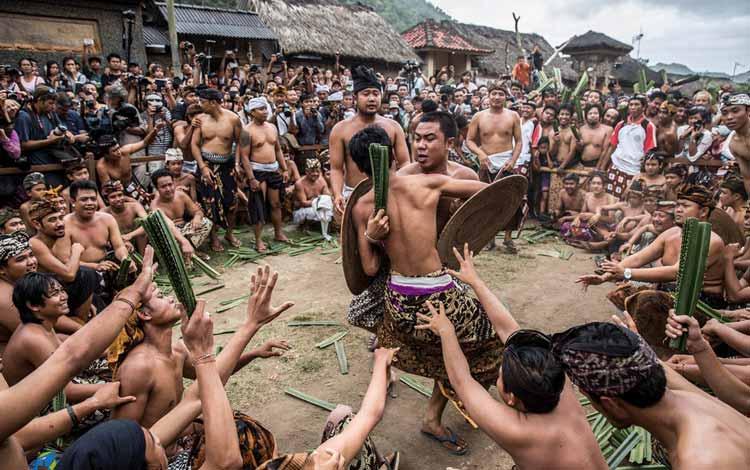 Daftar Festival Perang Paling Unik Dan Seru Di Dunia - Perang Pandan