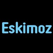 Eskimoz, veille seo