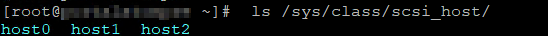 ls /sys/class/scsi_host
