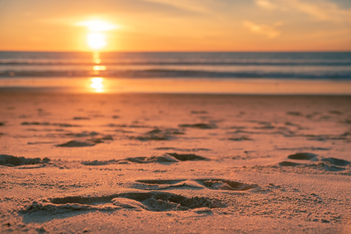 Leave nothing but footprints on the beach