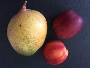 Brzoskwinie, nektraynki i mango