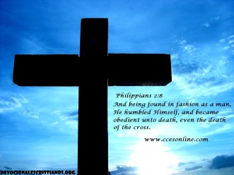 philippians-28_1756_1024x768