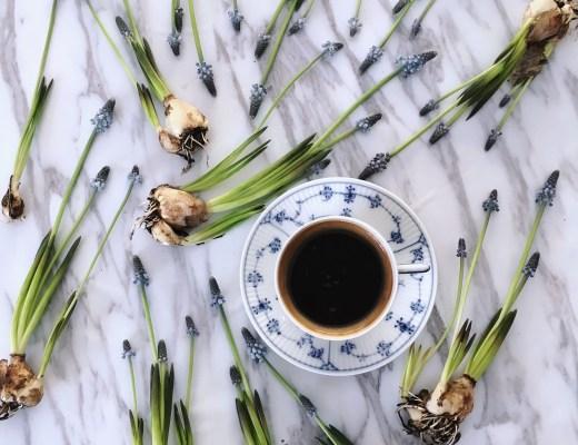 annelies blomsterkaffe