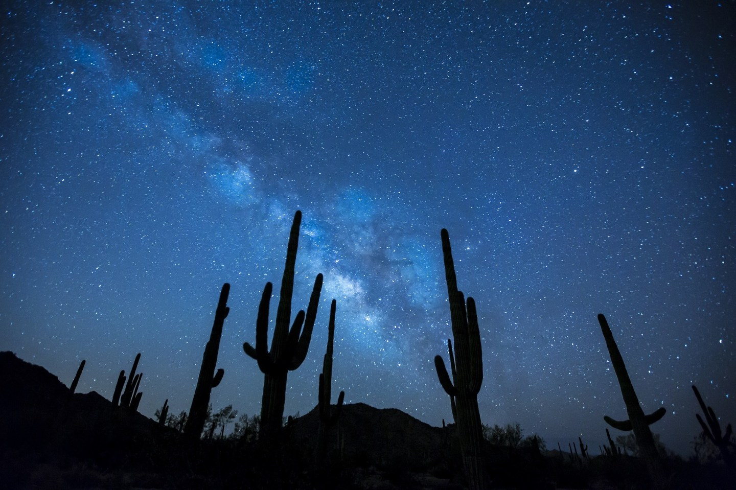 USA: Stellar attractions in Big Bend National Park