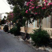 Santorini-Greece-17