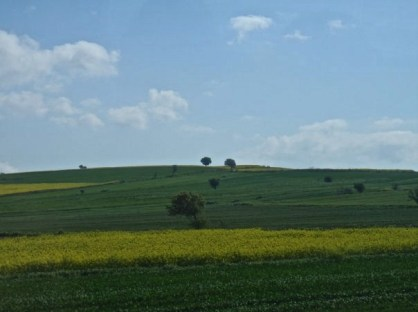 Fields of green and gold greeted us as we made our way to Gallipoli on Anzac Day eve.