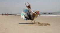 Amanda Friedman - Because Nothing Ends
