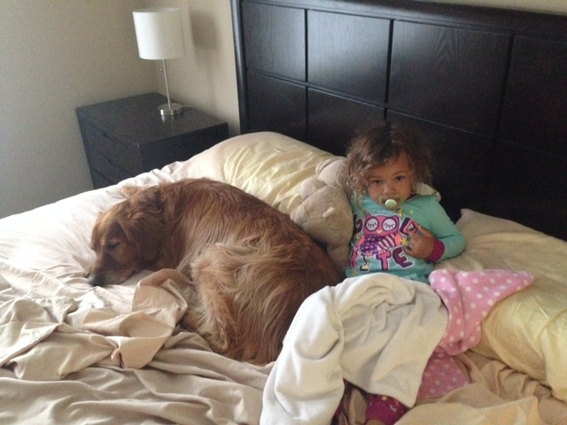 Bed takeover