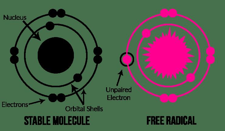 Molecule and Free Radical Diagrams