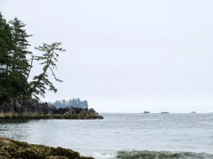 Why You Should Go Camping on Vancouver Island