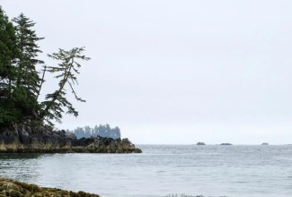 camping on vancouver island