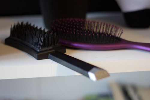 brosses jacques seban-5