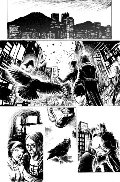 crow12