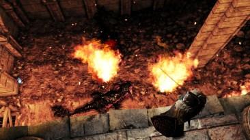 Dark Souls II (3)