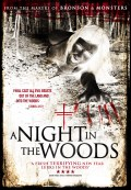 A-Night-In-The-Woods_Poster