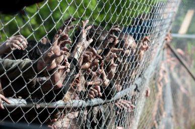 Walkers - The Walking Dead _ Season 4, Episode 1 - Photo Credit: Gene Page/AMC