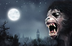HHN USH 2014 American Werewolf image sans txt