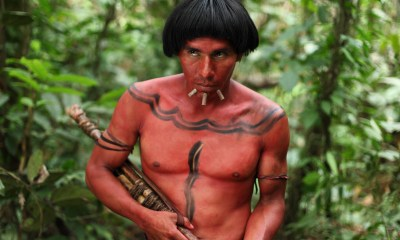 The Green Inferno, image via BH Tilt