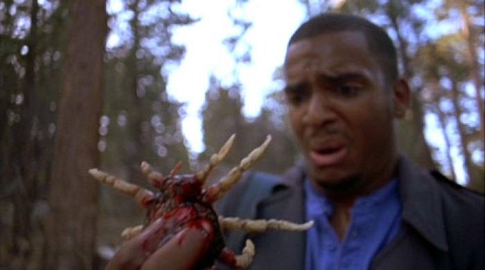 We Love '90s Horror] Gory, Gooey 'Ticks' Will Make Your Skin Crawl - Bloody  Disgusting